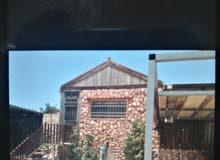 مزرعة في جرش للبيع او المبادلة بشقة في عمان الغربية