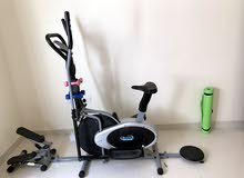 Bicycle with stepper and dumbbell twister