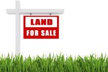 قطعة أرض مميزة للبيع في منطقة الذهيبة الغربية قرب منطقة الطنيب و اللبن على شارعين