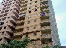 شقة فرصة علي شارع رئيسي بالمعمورة استلام فوري