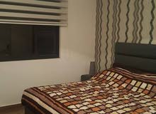 Available more than apartment - for rent in Abdoun Al Shamali-daily or weekly or monthly-100 m