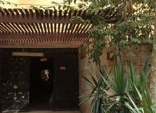شقة للبيع بحدائق الاهرام 120 متر البوابة الرابعة 250 الف دور رابع قبل الاخير استلام فوري