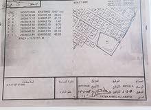 ارض ضخمه في وادي عدي