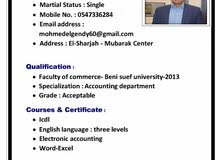 محاسب مصري يبحث عن وظيفه