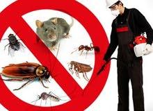 متخصصون فى مكافحة الصراصير وجميع انواع الحشرات والقوارض 0122333060