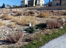 Brand new Villa for sale in ZarqaDahiet Al Amera Haya