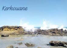 Terrains pied dans l'eau à kélibia !!! 28910825