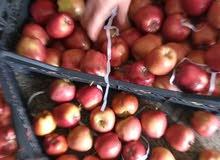 تفاح تركي درجه اوله حبه صغيره