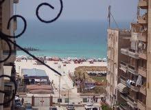 شقة سوبر لوكس سادس نمرة للبحر مسجلة في شاطئ النخيل شارع رئيسي