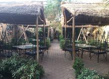 مطعم وكافيه في العمارات مفتوح ومرخص للمشاركة او البيع