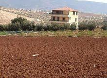 للبيع مزرعة نموذجية ب إطلالة خلابة في البلقاء