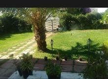 شقة للاجار بحب بحي راقي بالمنزه السادس بتونس العاصمة