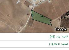 جنوب المطار /الجيزة/قرية الباسلية تصلح الارض لمشاريع الطاقة الشمسية و الزراعة