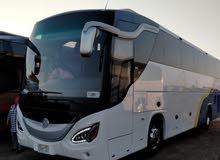 باص مرسيدس 600 50 راكب 2020 للرحلات
