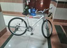 دراجة جبلية بحالة جيدة قياس 24للبيع