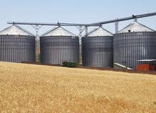 بحث عن عمل فى مصانع طحن الحبوب والدقيق مهندس انتاج