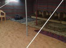 مخيم صيفي (عزبة) Summer Camp 9221 2985