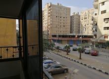 حي الواحه مدينه نصر