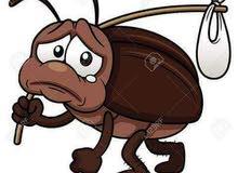 مكافحة جميع انواع الحشرات بأفضل الطرق آمان لخدمات التنظيف