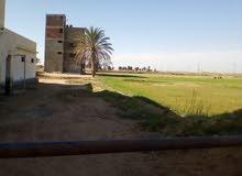 مزرعة دواجن مرخصة ومبنى ىسكني دورين  و7فدان ونصف مسجلة على طريق عمومي