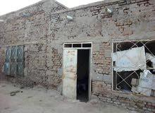 بيت بالحصاحيصا السودان حي اركويت مربع 92