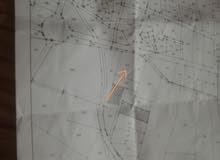 جرش / مرصع  منطقة مطل  مرتفعة  قريبة من شارع الاردن أقل من 3000 متر