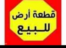 سلام عليكم قطعه لليبع مساحة وجهيه 10م ونزال 21ونص م ابو الخصيب طريق الفوك قرب مع