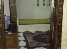 new apartment is up for sale in Alexandria Sidi Beshr
