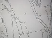 ارض 12دونم و 307 متر للبيع في دورا الخليل الرفادي الشرقي