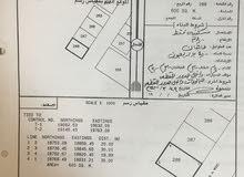 ارض سكنية بولاية محوت للبيع