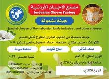knafa Cheese