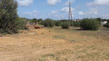 ارض 1260 متر  قريبة من طريق الزهراء