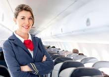 لكي تعمل بالطيران (مضيفه طيران)