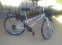 دراجه يابانيه للبيع او للبدل على طيور