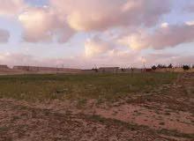100 متر يمين طريق بنغازي فرصة مخطط قطع ارضي شهادة عقارية زراعية ماء وكهرباء