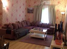 شقة مفروشة من المالك مباشرة غرفة وصالة للايجار في عجمان