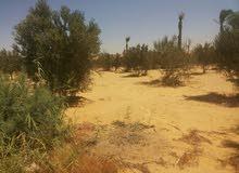 امتلك ارضك في ارقي موقع للاستثمار بجوار الارياف ع طريق مصر الفيوم