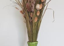 نبات صناعي