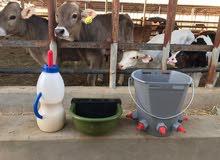 مراضيع للأغنام والابقار