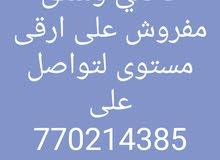 براج العصر(1) صاحب العرض وهيب محمد