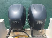 قارب بركودا 31 قدم