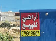 مرج الفرس شفا بدران منطقة قصور
