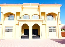 متوفر للايجار استوديوهات و شقق غرف وصاله تشطيب اول ساكن بمدينة شخبوط  (خليفه ب )