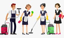 نوفر عمال نظافة بنقلادبش للمطاعم والفنادق