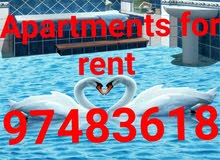 apartment for rent in Kuwait City Bnaid Al-Qar