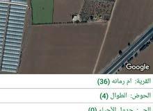 ارض للبيع 5300م طريق عمان مادبامقابل الاندلسيه