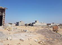 قطعة ارض طابو زراعي في البصرة بأسم عراقي ساكن في بغداد جاهز للوكالة