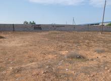 قطعة ارض للبيع مثلت القيو 500 متر
