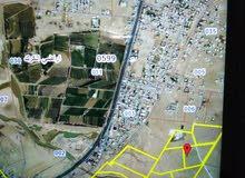 ارض للبيع في القطرانه الكرك قريبه من الشارع الدولي