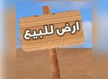 قطعة ارض للبيع في اربد ايدون دوار العيادات